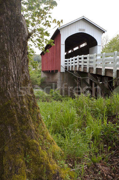 Currin Covered Bridge Row River Valley Vintage Road Transportati Stock photo © cboswell