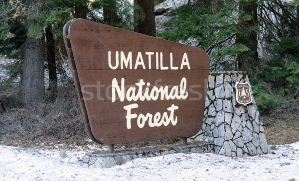 Umatilla National Forest Entrance Sign Oregon Wilderness Stock photo © cboswell