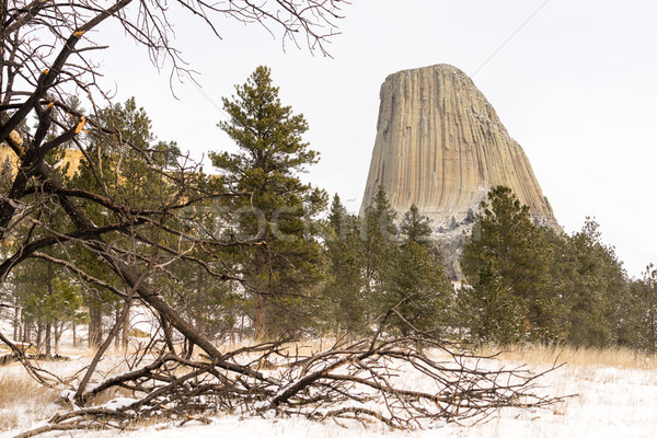 Devils Tower Wyoming Winter Snow Rock Butte Stock photo © cboswell