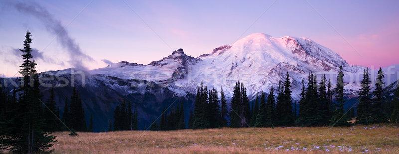 Sunrise Mt Rainier National Park Cascade Volcanic Arc Stock photo © cboswell