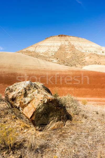 Kayalar arazi gün fosil Oregon kaya Stok fotoğraf © cboswell