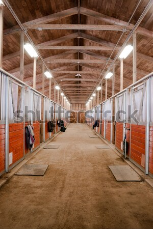 Stall Center Path Horse Paddack Equestrian Stable Stock photo © cboswell
