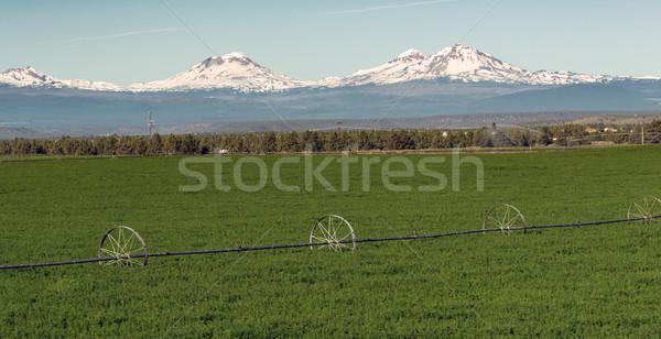 üç Oregon çağlayan dağ Stok fotoğraf © cboswell