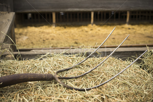 Old Wooden Farm Pitchfork Tool Implement Barn Equipment Stock photo © cboswell