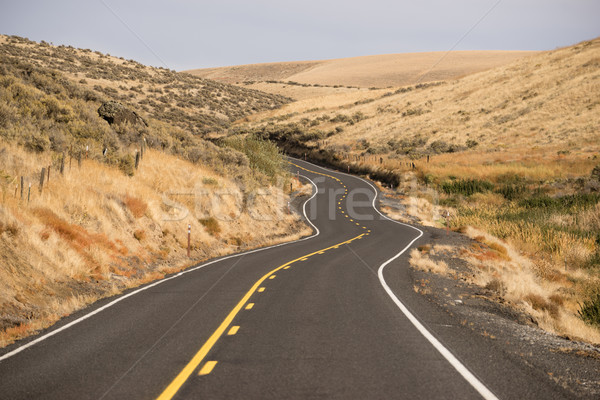Open Road Two Lane Highway Oregon State USA Stock photo © cboswell