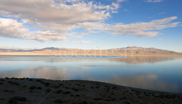 Twenty Mile Beach Walker Lake Western Nevada United States Stock photo © cboswell