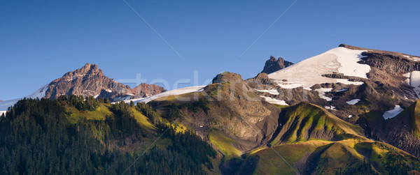 Cascade Range Pacific Crest Trail Heliotrope Ridge Mt. Baker Stock photo © cboswell