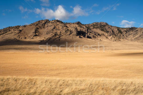 Cliffs Bluffs Valley Farmland Pacific Northwest Territory Stock photo © cboswell