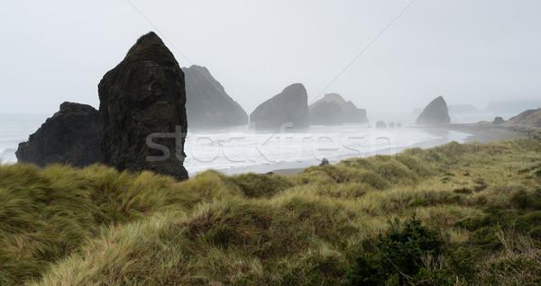 Nebuloso nebuloso praia oceano ocidente costa Foto stock © cboswell
