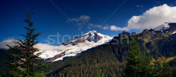 Horizontal Panoramic Mt Baker Heliotrope Ridge Cascade Range Stock photo © cboswell