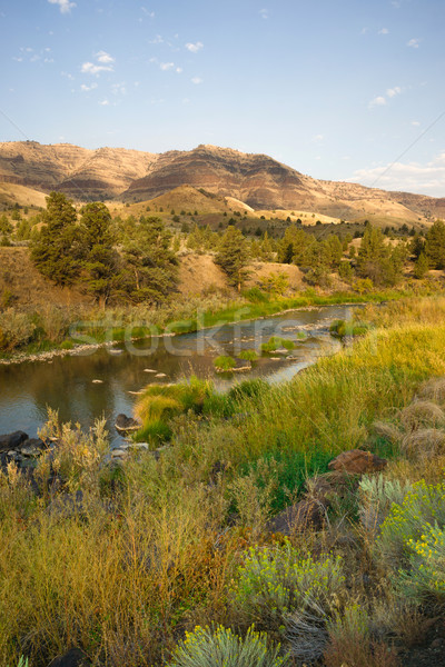 Squaw Creek Butler Basin John Day Fossil Beds Oregon Stock photo © cboswell
