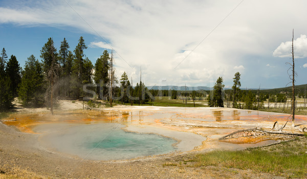 Hot Mineral Springs Bubble and Boil Yellowstone National Park Stock photo © cboswell