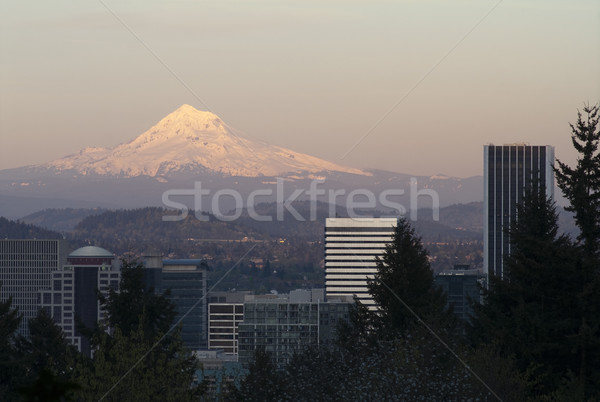Architecture Buildings Downtown Portland Cascade Range Mount Hoo Stock photo © cboswell