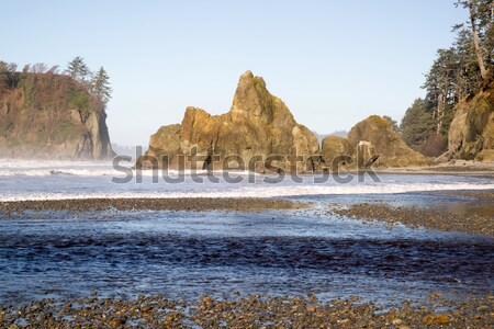 Pacific Ocean Coast Landscape Sea Surf Rugged Buttes Bluffs Stock photo © cboswell
