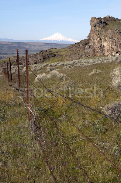 Vertical Composition Barbed Fence Rocky Ridge Sage Brush Mount H Stock photo © cboswell