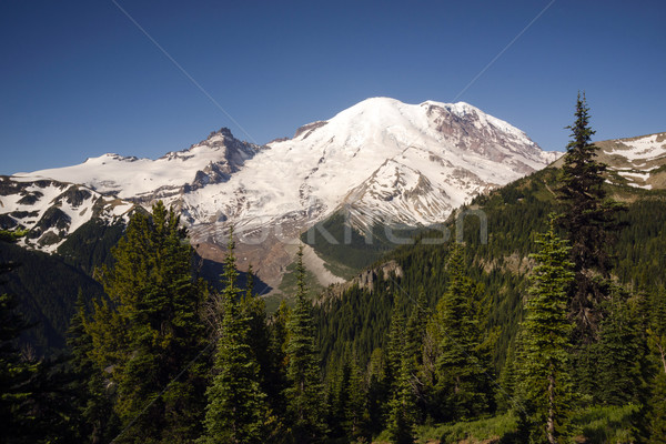 Weg groß Berg Kaskade Bereich Ansicht Stock foto © cboswell