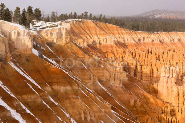 Fresco neve queda desfiladeiro rocha Utah Foto stock © cboswell