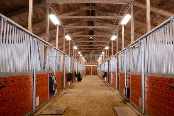 Horse Barn Animal Sport Paddock Equestrian Ranch Racing Stable Stock photo © cboswell