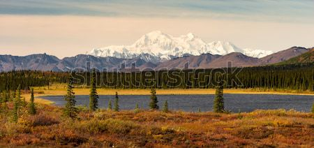 Denali Range Central Alaska Wilderness Area Mountain Lakes Stock photo © cboswell