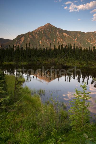 Alasca montanha lago vertical bandeira Foto stock © cboswell