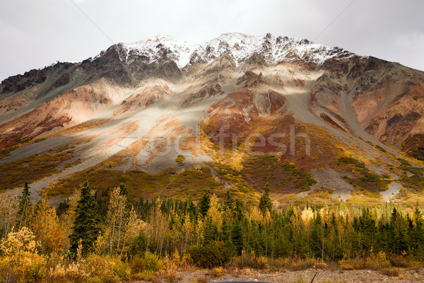 Automne couleur neige pic Alaska gamme Photo stock © cboswell