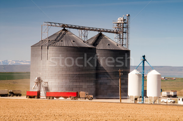 Agricultural Silo Loads Semi Truck With Farm Grown Food Grain Stock photo © cboswell