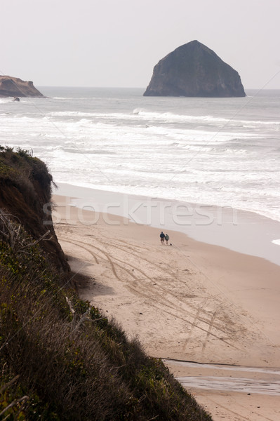 Couple Walks Blustery Day Bluffs Seaside Oregon Coast Pacific Oc Stock photo © cboswell