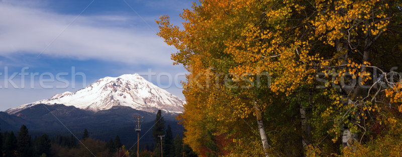 Mt Shasta Rural Fall Color California Nature Outdoor Stock photo © cboswell