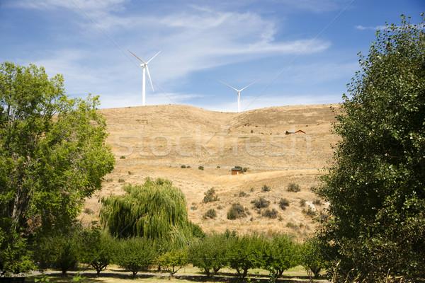 сельский стране сторона современных зеленый ветер Сток-фото © cboswell