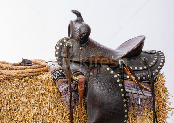 Western Gear Artist's Saddle Tack Gloves Rope Hay Bale Stock photo © cboswell