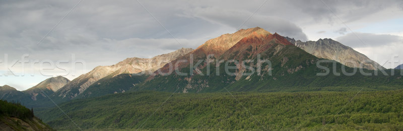 Chugach Mountains Near Highway 1 Alaska United States North Amer Stock photo © cboswell