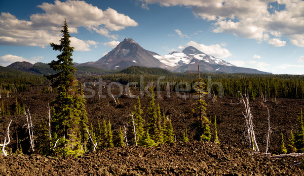 Mckenzie Pass Three Sisters Cascade Mountain Range Lava Field Stock photo © cboswell