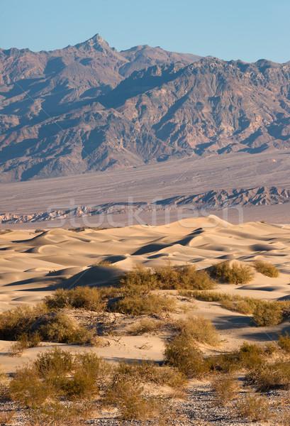 Areia morte vale deserto montanhas Foto stock © cboswell