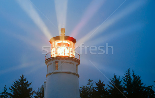Stok fotoğraf: Deniz · feneri · aydınlatma · yağmur · fırtına · deniz · mükemmel