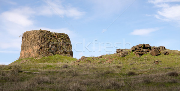 Hat Rock State Park Columbia River Gorge Oregon Parks Recreation Stock photo © cboswell