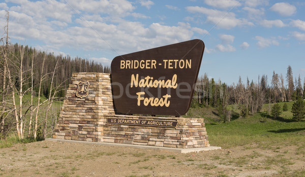 Welcome Sign Bridger-Teton National Forest US Department of Agri Stock photo © cboswell
