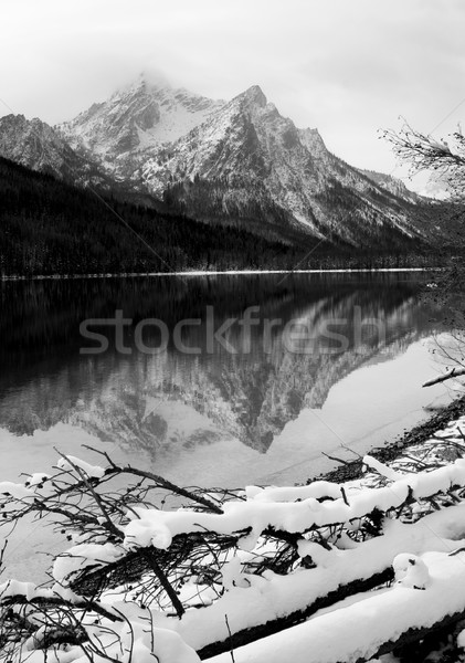Sawtooth Mountain Lake Deep Winter Landscape Idaho National Recr Stock photo © cboswell