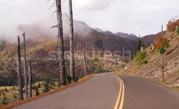 Panorama vulcano strada spirito lago Foto d'archivio © cboswell