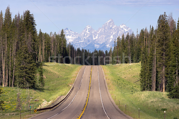 East Approach Highway to Grand Teton National Park Stock photo © cboswell