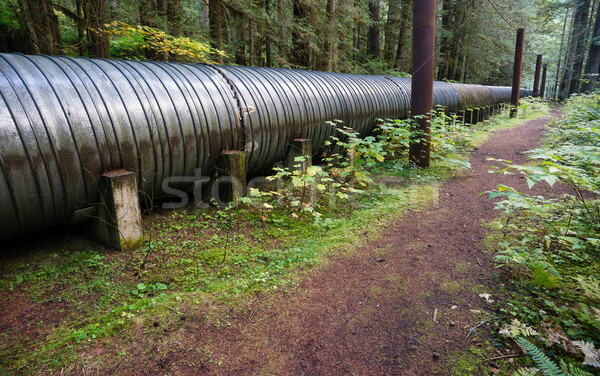 Large Pipeline Industrial Pipe Indistry Construction Viaduct Stock photo © cboswell