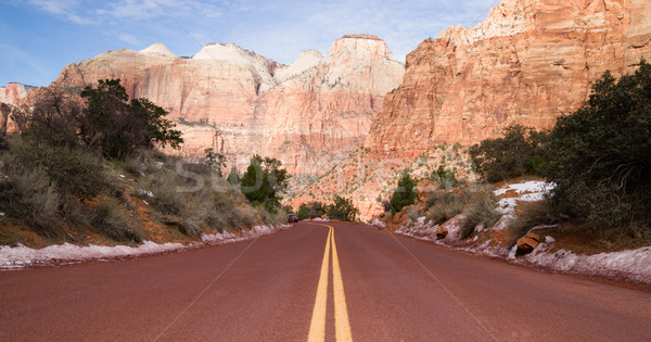 Road Through High Mountain Buttes Zion National Park Desert Sout Stock photo © cboswell