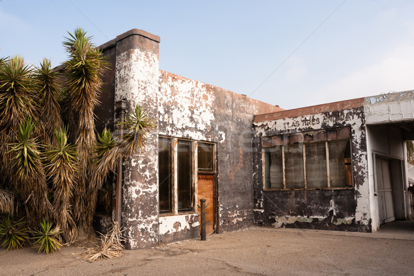 Palm Trees Beside Abandoned Gas Service Station Ghost Town Stock photo © cboswell