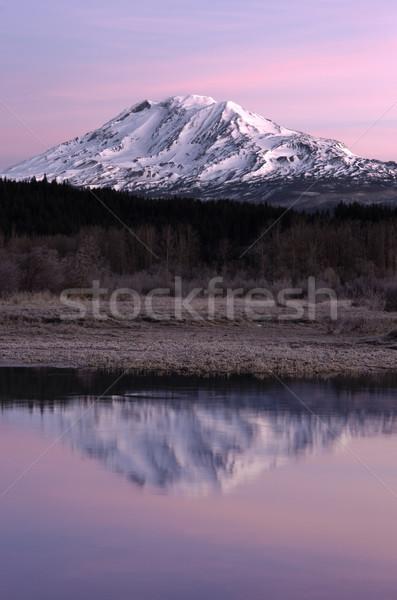 Still Morning Sunrise Trout Lake Adams Mountain Gifford Pinchot  Stock photo © cboswell