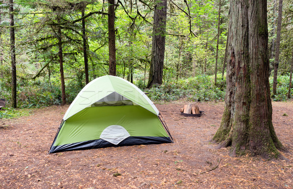 2 Person Tent Wooded Campsite Oxbow Regional Park Stock photo © cboswell