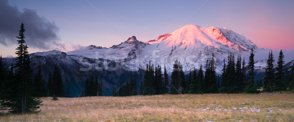 Smokey Sunrise Mt Rainier National Park Cascade Volcanic Arc Stock photo © cboswell