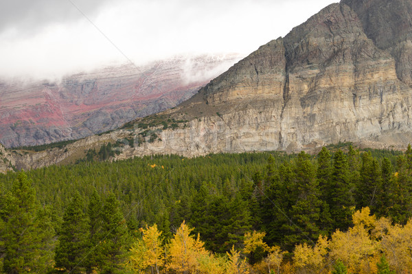 Vallen kleur veel gletsjer park Montana Stockfoto © cboswell