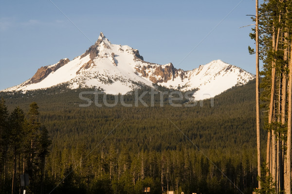Mount Thielsen Big Cowhorn Extinct Volcano Oregon High Cascades Stock photo © cboswell