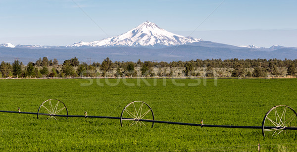 Fenséges Oregon vízesés hegy terjedelem farm Stock fotó © cboswell