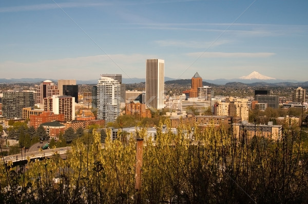Portland Oregon Stock photo © cboswell