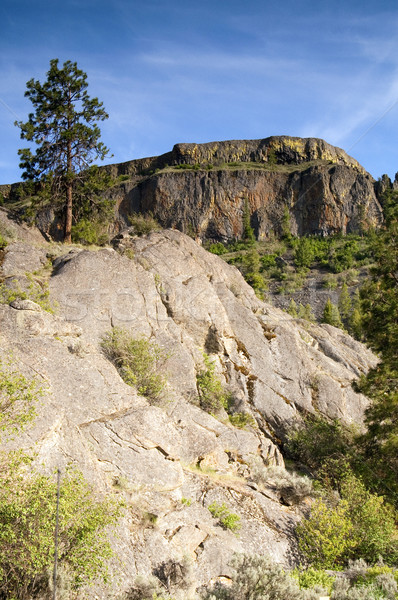 Rocky Ridge Outcroppings Near Banks Lake Washington State Stock photo © cboswell